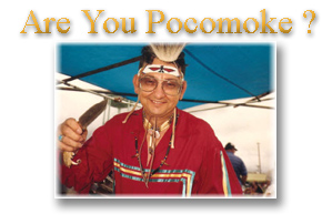 Are You Pocomoke